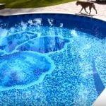 salt water pool liners
