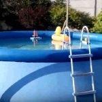 intex pools walmart