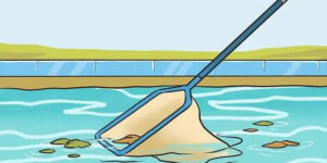 How to service your pool on your own