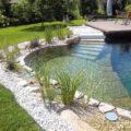 natural swimming-pools