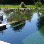 all natural pool designs