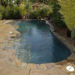 natural inground pool designs