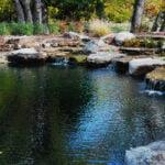 natural pool designs texas